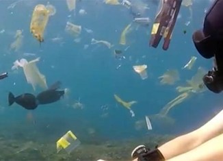 Pollution off Bali's lovely holiday coast exposed: A sea of plastic (video)