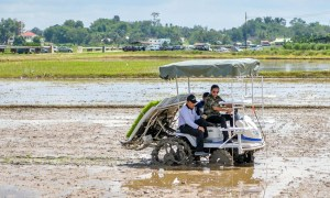 Brunei Opens Largest Rice Farm To Boost Food Self-sufficiency