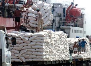 Cambodia rice export
