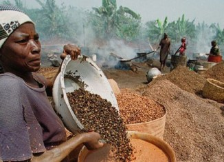 Malaysia firm sets sight on Congo