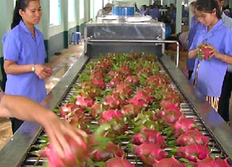 Vietnam's fruit exports to hit record high in 2014