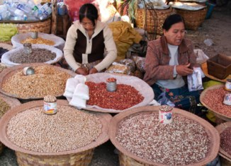Pulses and beans offer Myanmar top trade window
