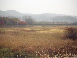 North Korea_DMZ11_Arno Maierbrugger
