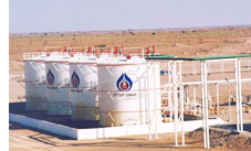 PTT Gas