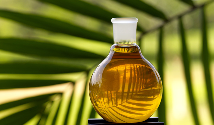 Palm Oil Transport