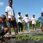 One shot dead at rubber farmers' protest in Thailand