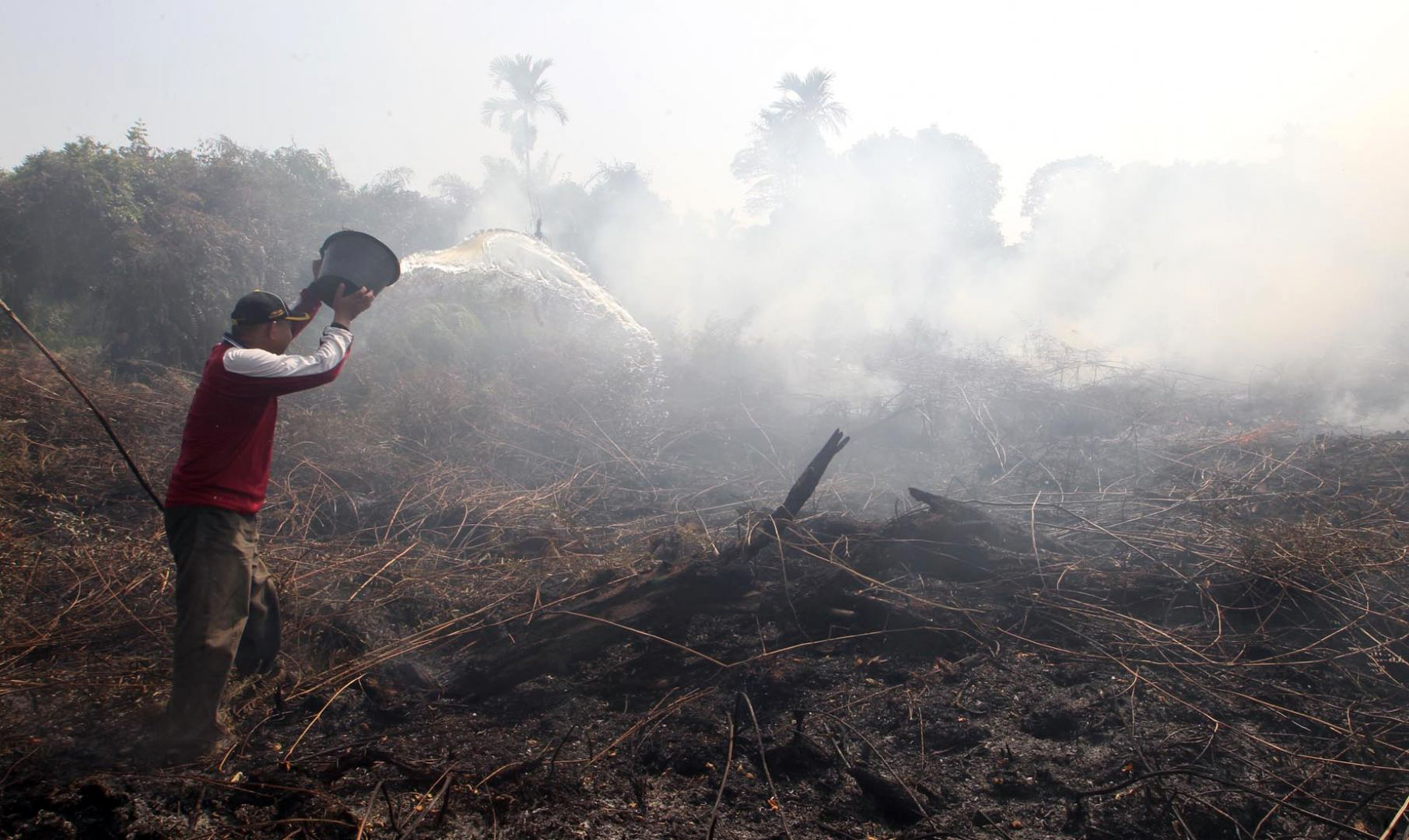 Indonesia to open cases against Sime Darby firms