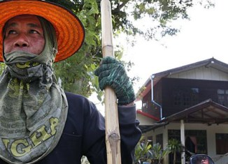 Thai rice farmers plan huge rally in Bangkok