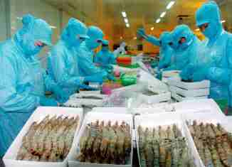 Vietnam seafood exports surge 25% in first 7 months