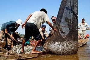 cambodia fishing1