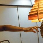 Malaysian durians cause panic in Australia