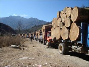 myanmar.logging