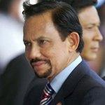 Brunei invests in Turkey