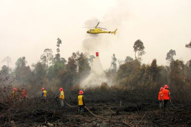 Indonesia says forest fires under control