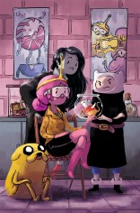 ADVENTURE TIME #29 COVER D