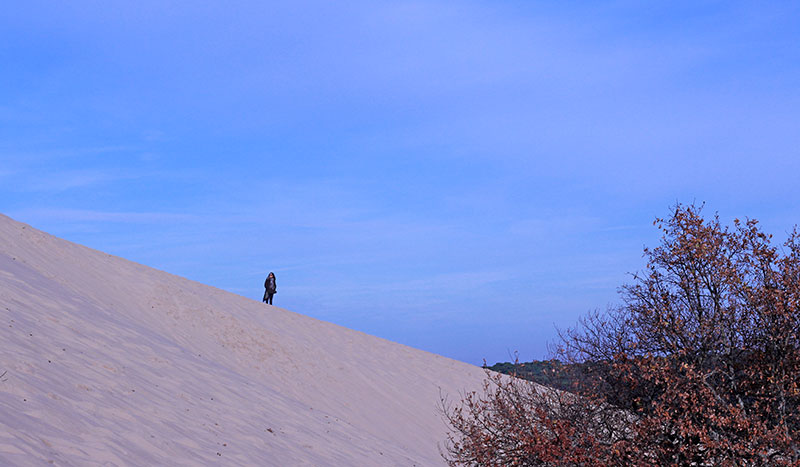 Vistas desde la duna