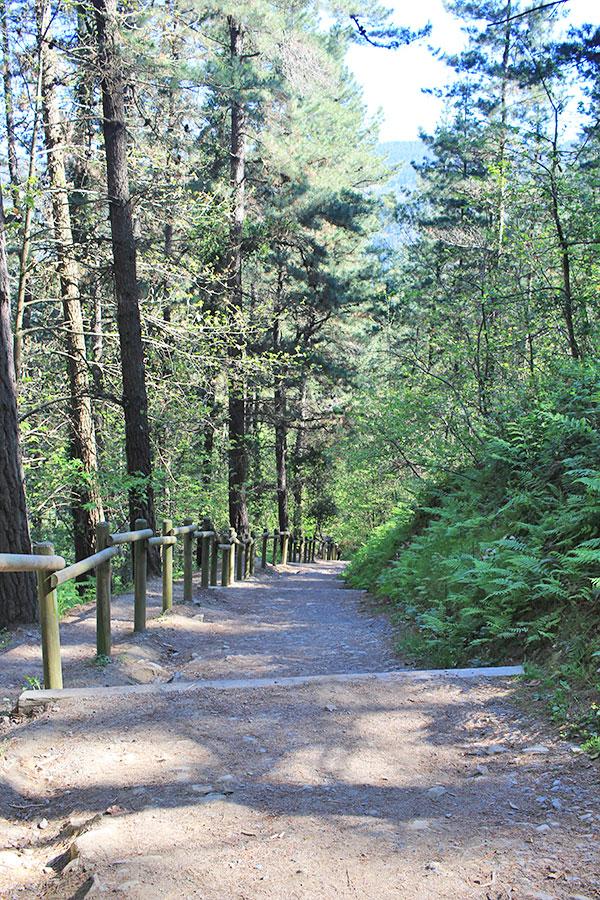 Escalera del Bosque de Oma, el tramo más cansado del recorrido.