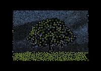 One Tree Circles