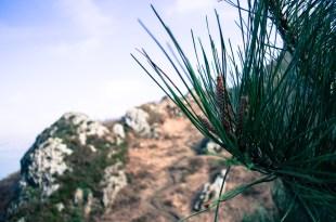 Monte Ulia SenderismoMonte Ulia Senderismo