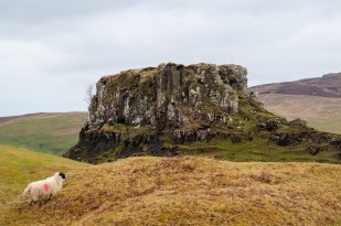 Fairy Glen mount