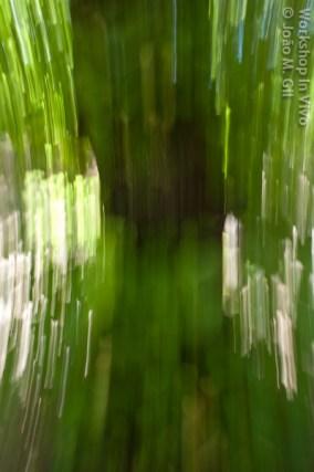 JGil_07_2012-9