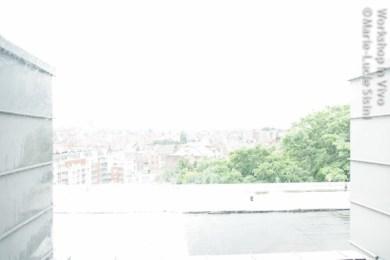 MLucSi_07_2012-1