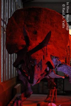 RValls_09_2012-10
