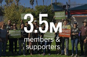 3.5 million members and supporters