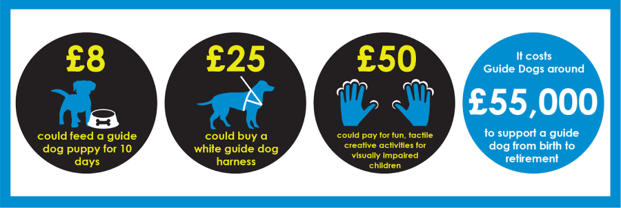 Infographics reading £8 could feed a guide dog puppy for 10 days, £25 could buy a white guide dog harness, £50 could pay for fun tactile creative activities for visually impaired children and it costs guide dogs around £55000 to support a guide dog from birth to retirement.