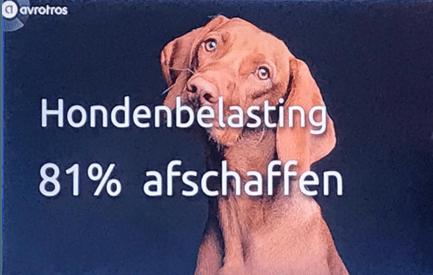 afschaffen hondenbelasting