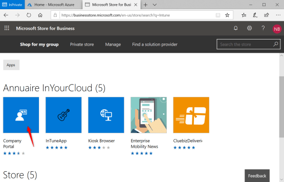 Select Company Portal into Windows Store for Business
