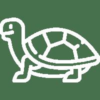 diagram żółwia ikona