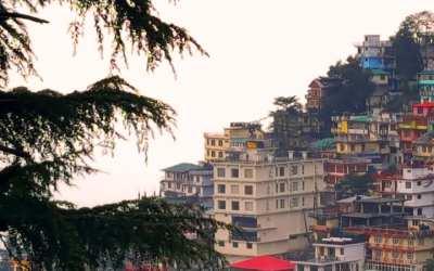 Atradimai ir patyrimai Dharamsaloje 2017 | McLeod Ganj