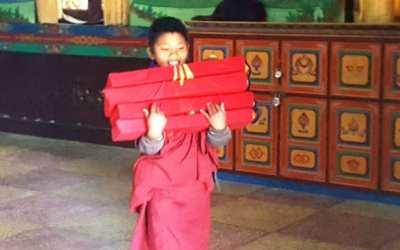 Jaukioji Tso Pema 2017 | Drikung Kagyu vienuolynas