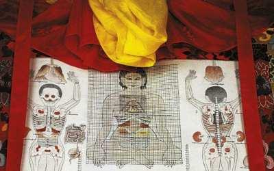 Tibeto medicinos priemonių įvairovė
