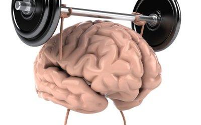 Mankšta smegenų pusrutuliams