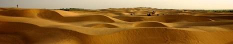 cropped-thar_desert.jpg