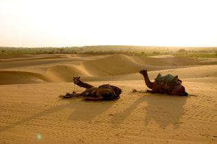 Jaisalmer deserto Thar