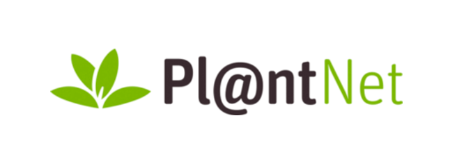 Review aplicatia PlantNet