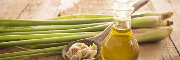 Luptă împotriva căderii părului cu ulei esențial de lemongrass