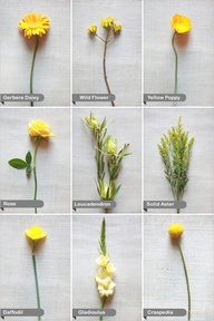 yellow-wedding-flower-guide