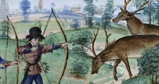 Selvaggina e cacciagione