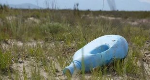 tutela degli habitat naturali