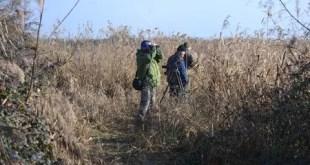 I Cacciatori italiani collaborano al censimento degli uccelli acquatici