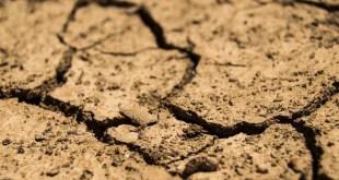 ISPRA scrive alle Regioni: limitare la caccia a causa della siccità e degli incendi