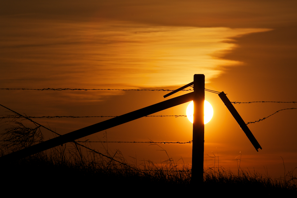 Fenced in Alberta Prairie Sunset