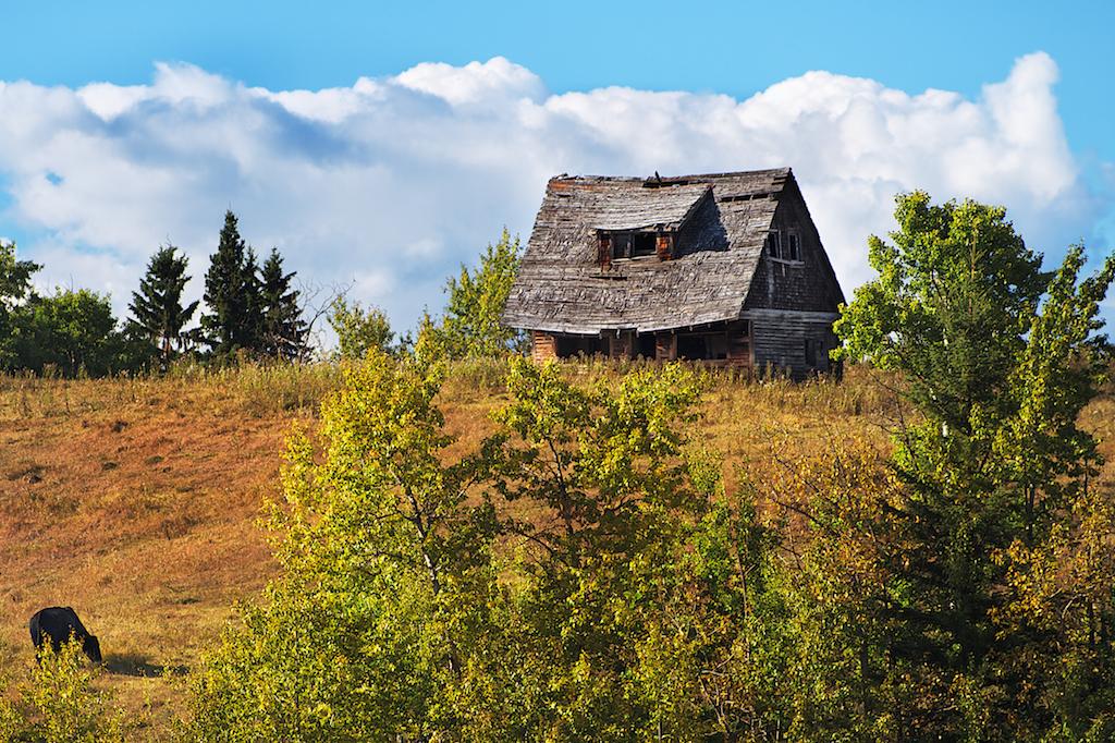 Autumn Pastoral Homestead