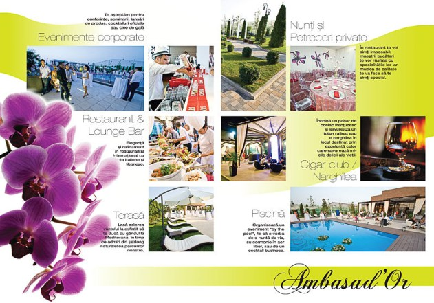 Layout design 015