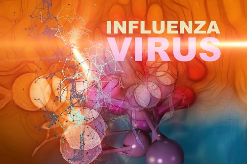 Influenza virus rife frequencies
