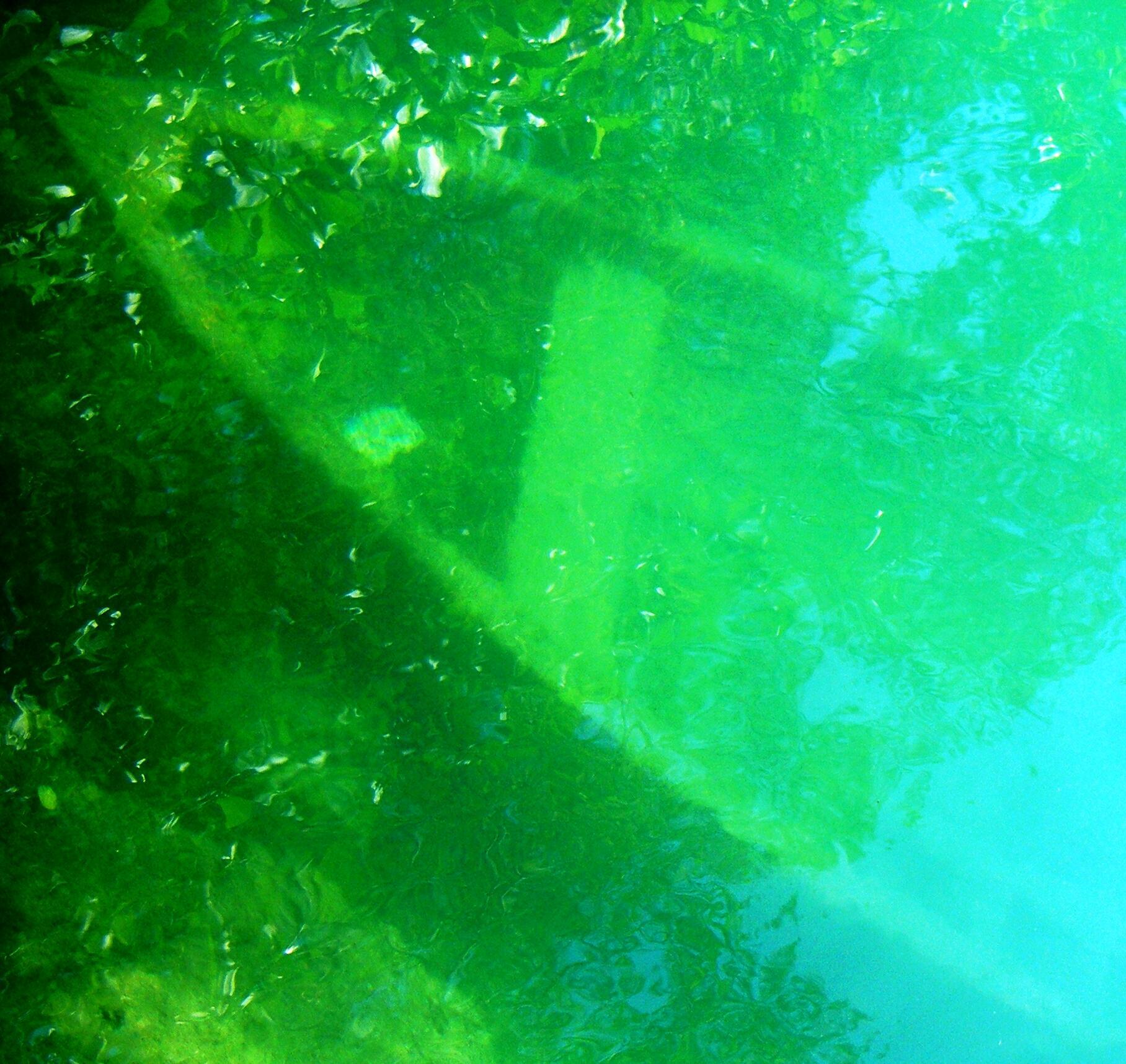 Pesca miracolosa e storie fluenti lungo l'Adda